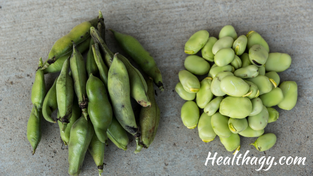 Green lima bean pods and lighter green shelled lima beans.